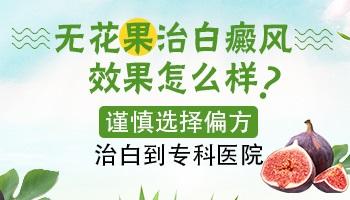 无花果汁液可以治疗白癜风吗 偏方治白斑效果好吗